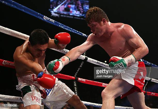 Canelo Alvarez knocks down Josesito Lopez with a right to the head during their WBC super welterweight title fight at MGM Grand Garden Arena on...