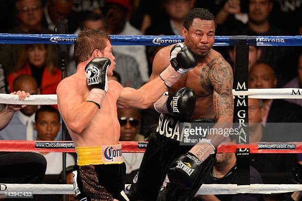 Canelo Alvarez lands a left to the face of Shane Mosley during their WBC super welterweight title fight at the MGM Grand Garden Arena on May 5 2012...