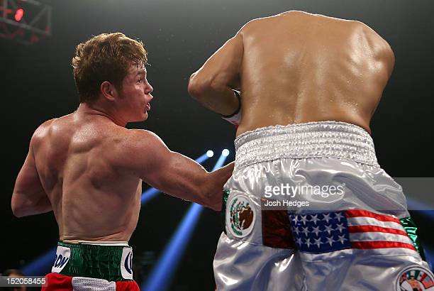 Canelo Alvarez lands a right uppercut against Josesito Lopez during their WBC super welterweight title fight at MGM Grand Garden Arena on September...