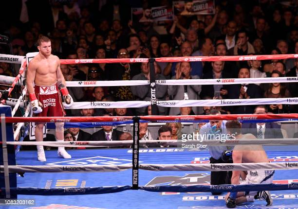 Canelo Alvarez looks on as Rocky Fielding kneels on the ground during their WBA Super Middleweight title bout at Madison Square Garden on December 15...