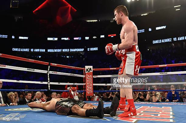 Canelo Alvarez reacts after his knockout to Amir Khan during the WBC middleweight title fight at TMobile Arena on May 7 2016 in Las Vegas Nevada