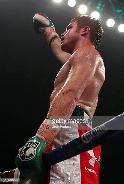Canelo Alvarez reacts after knocking out Josesito Lopez during their WBC super welterweight title fight at MGM Grand Garden Arena on September 15...