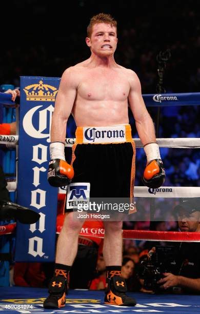 Canelo Alvarez stands in the ring between rounds during his junior middleweight bout against Erislandy Lara at the MGM Grand Garden Arena on July 12...