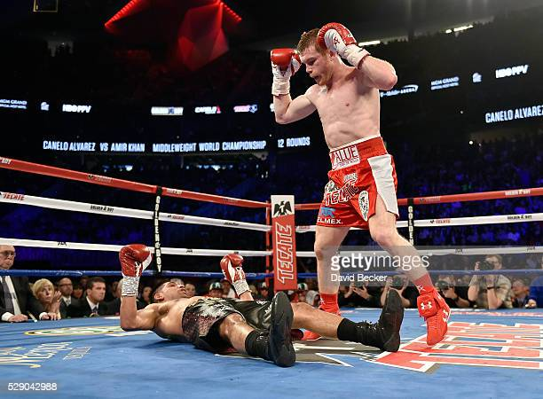 Canelo Alvarez stands over Amir Khan after delivering a knockout punch during the sixth round of their WBC middleweight title fight at T-Mobile Arena...