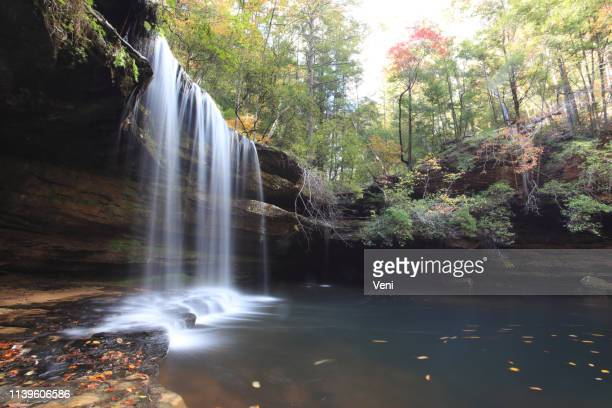 caney falls, alabama - gulf coast states stock pictures, royalty-free photos & images