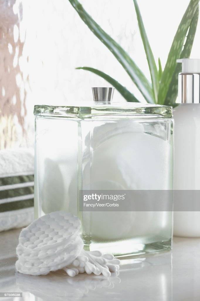 Canister of cotton pads and aloe vera plant : Stock Photo