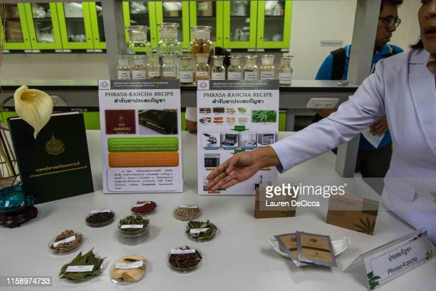 Cannabis and other Thai traditional herbs on display at the Medicinal Cannabis Research Institute at Rangsit University on August 2, 2019 in Bangkok,...
