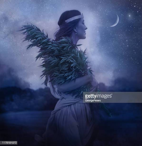 cannabis goddess holding bundle of cannabis plants and night sky - flower moon stock pictures, royalty-free photos & images
