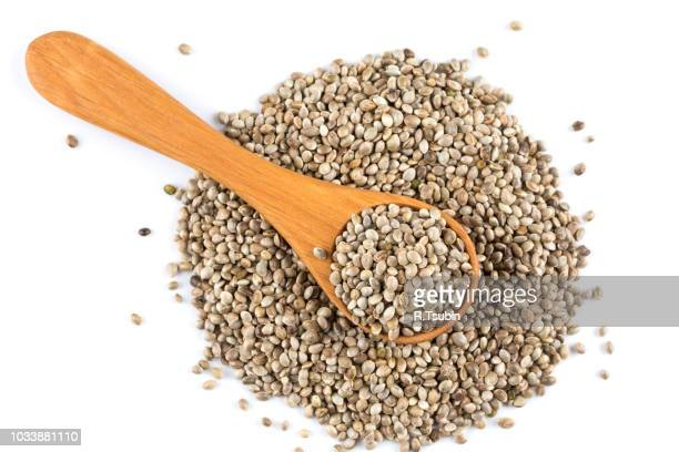 cannabis hemp seeds in spoon on white - hemp seed stock photos and pictures