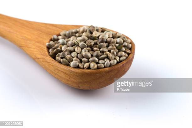 cannabis hemp seeds in wooden spoon on white - hemp seed stock photos and pictures