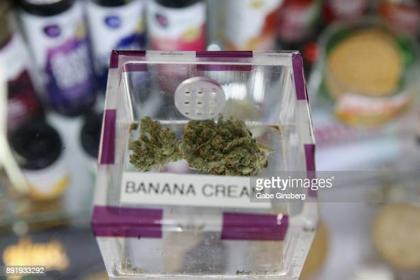 Cannabis is displayed during a meet and greet to introduce Cheech Marin's new line of cannabis products at Essence Vegas Cannabis Dispensary on...