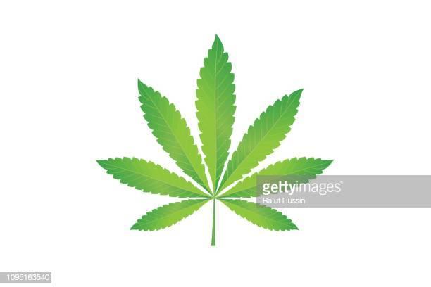 Cannabis marijuana hemp, leaf flat icon, vector green medicine weed, vector herb - Vector Illustration
