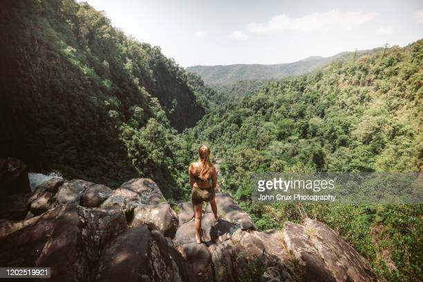 cannabullen backpacker - atherton tableland stock pictures, royalty-free photos & images