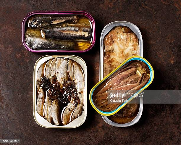 canned fish - canned food stock pictures, royalty-free photos & images