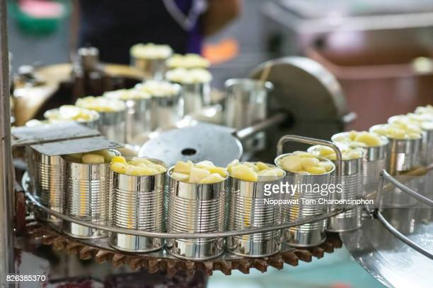 Canned pineapple production line, Thailand