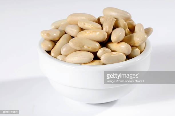 Cannellini beans in ceramic bowl, close-up
