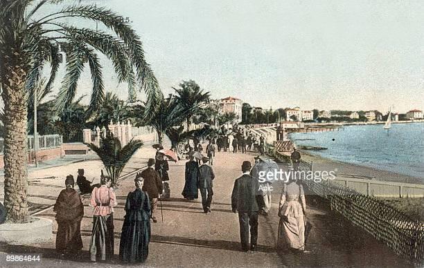 Cannes the croisette postcard c 1904