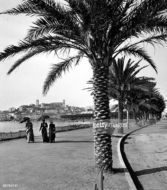 Cannes The walk of Croisette by 1900 LL18123A Stereo