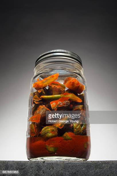 Canning Jar of Home Made Kimchee or Kimchi