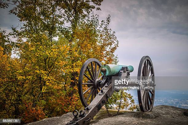 Cannon Against Trees And Sky