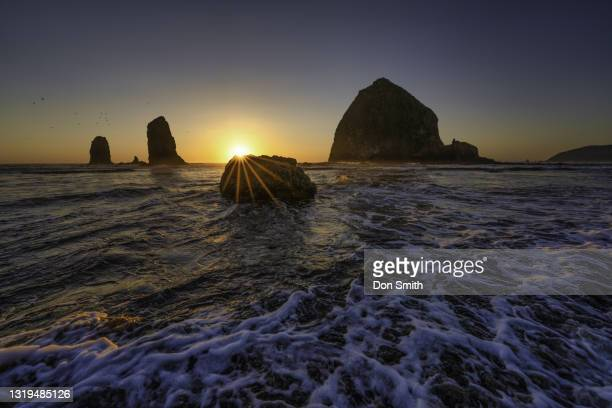 cannon beach and haystack rock at sunset - don smith stock pictures, royalty-free photos & images