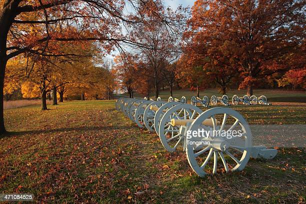 cannon display - american troops at valley forge stock pictures, royalty-free photos & images