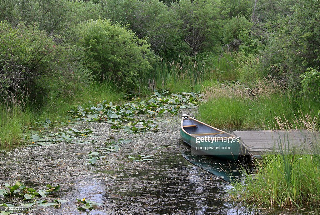 Canoe and Marshland : Stock-Foto