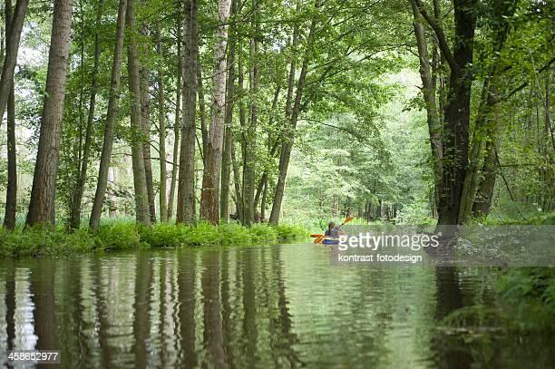 canoagem em spreewald - spreewald imagens e fotografias de stock