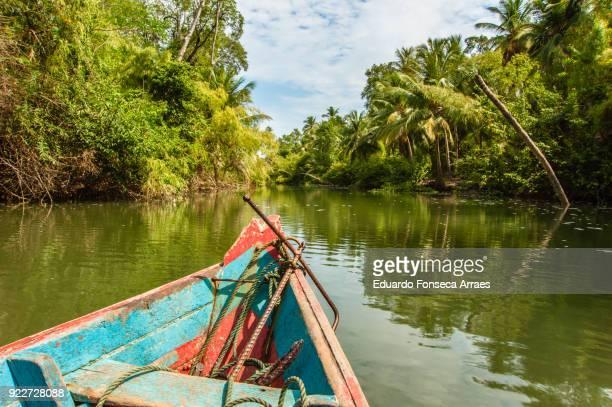 canoeing in the amazonian region - amazonia imagens e fotografias de stock