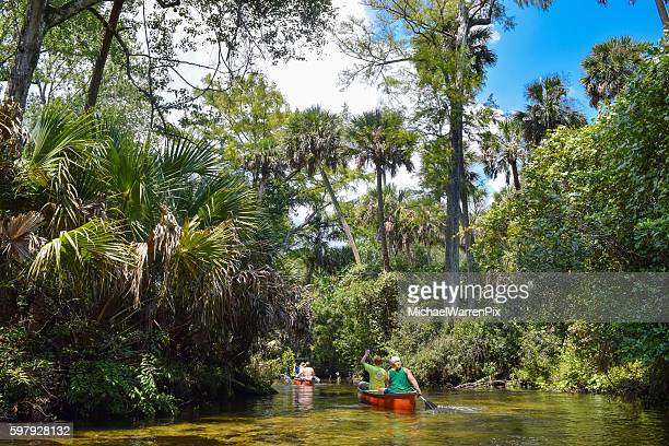 Canoeing in The Ocala National Forest