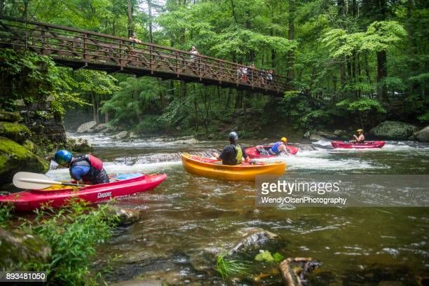 canoagem no riacho grande - parque nacional das great smoky mountains - fotografias e filmes do acervo