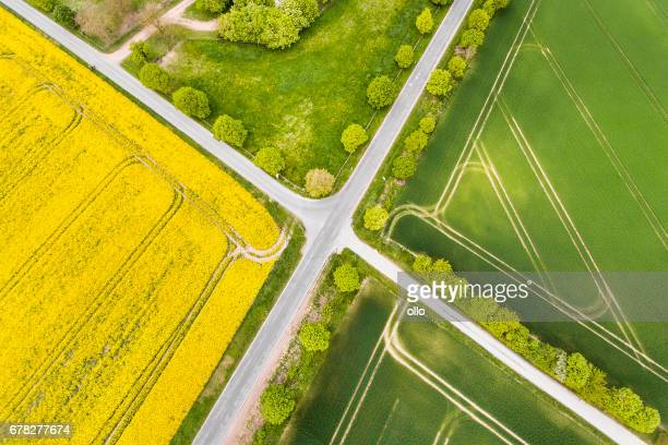 canola and wheat fields in spring - aerial view - crossroad stock pictures, royalty-free photos & images