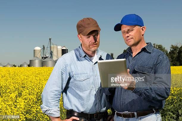 Canola Farmers