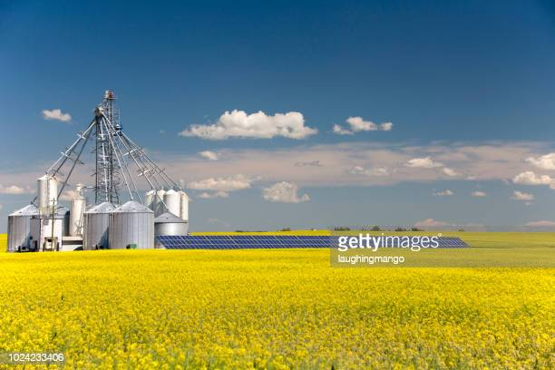 canola grain silo solar panel - alberta stock pictures, royalty-free photos & images