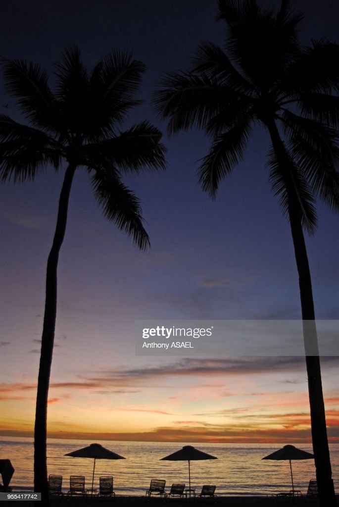 Coconut tree trunks, loungers and sunshades beside the seafront, the sunset colouring the horizon with orange, red and blue colors, Koror, Palau : News Photo