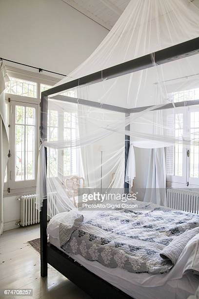 canopy bed with mosquito netting - mosquito net stock photos and pictures