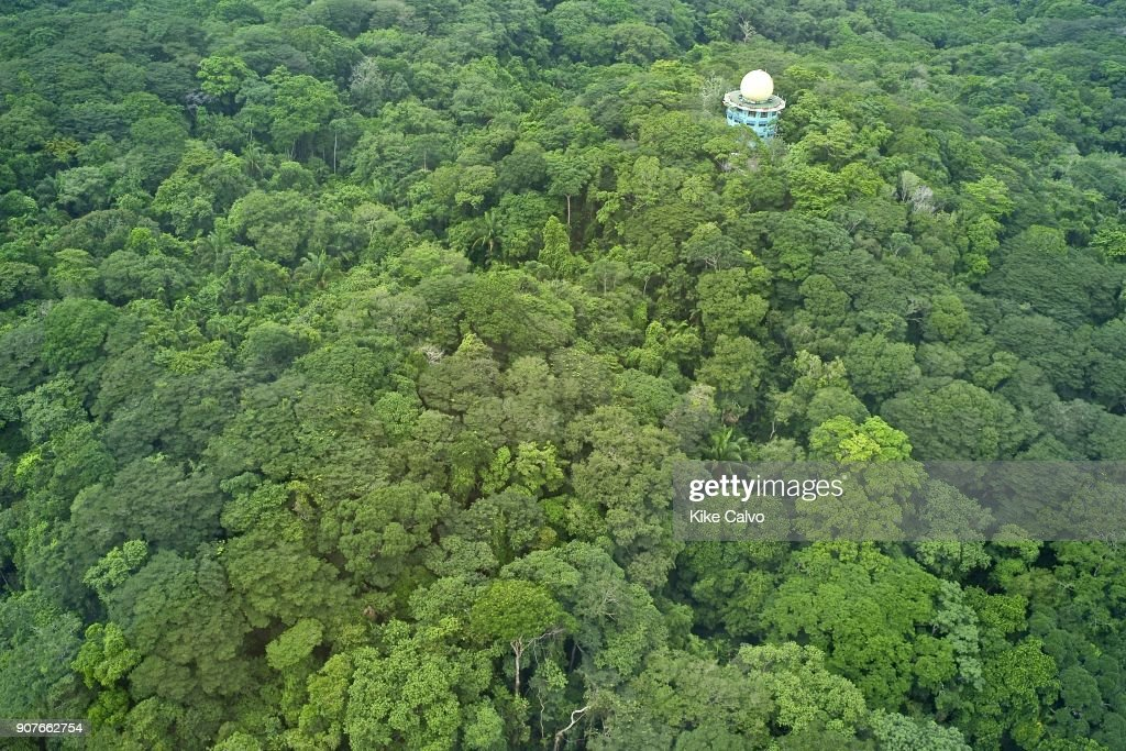 Canopy Tower Birdwatching Eco Lodge. Soberania National Park. Panama. & Canopy Tower Birdwarching Lodge Pictures | Getty Images