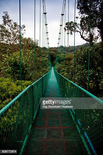 Canopy Trekking Costa Rica