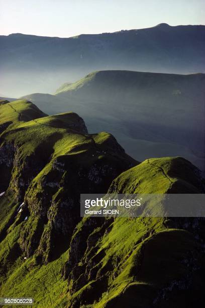 Cantal mountains in the regional natural park of Auvergne volcanoes, in the background Plomb du Cantal seen from Puy Mary, the Plomb du Cantal, is...