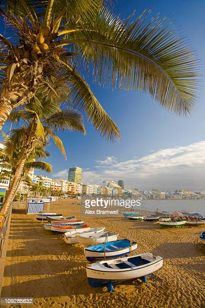 canteras beach - las palmas de gran canaria stock pictures, royalty-free photos & images