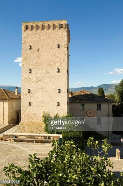 Cantina Rocca dei Fabbri. Montefalco. Umbria. Italy. Europe.