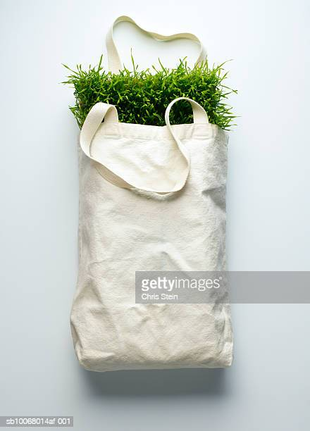 Canvas bag full of grass
