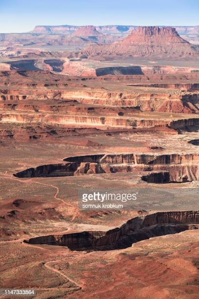 canyonlands in summer - dead horse point state park stock pictures, royalty-free photos & images