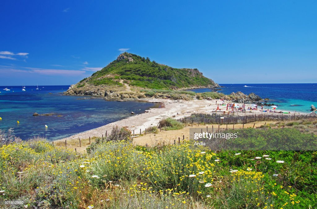 Cap Taillat headland, in the town of Ramatuelle (south-eastern France).