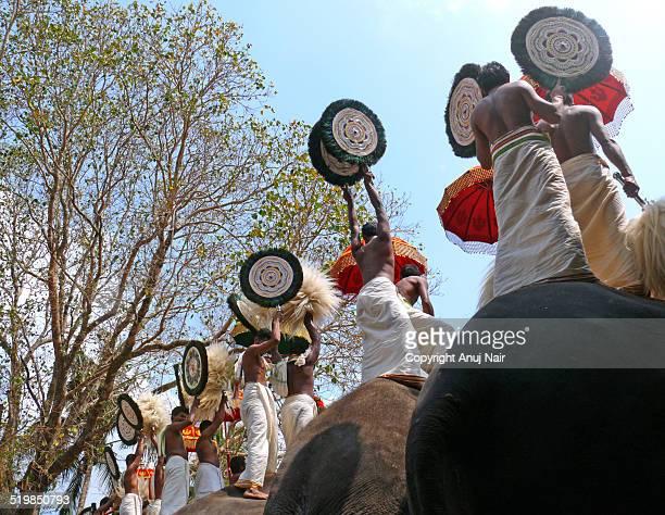 caparisoned elephants - kerala elephants stock pictures, royalty-free photos & images