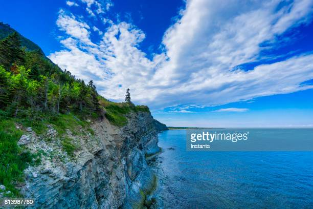 cap-bon-ami (translates to good friend cape in english) in forillon, one of canada's 42 national parks and park reserves, situated near gaspé, eastern québec. - canadian culture stock pictures, royalty-free photos & images