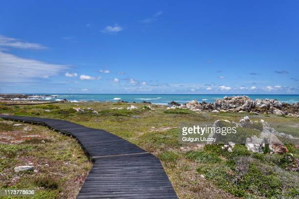 cape agulhas, western cape, south africa - western cape province stock pictures, royalty-free photos & images