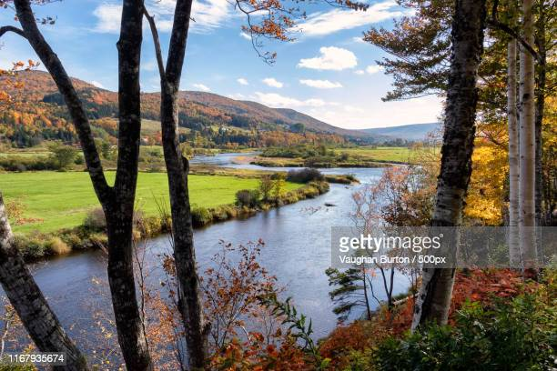 cape breton fall - cabot trail - margaree - cape breton island stock pictures, royalty-free photos & images
