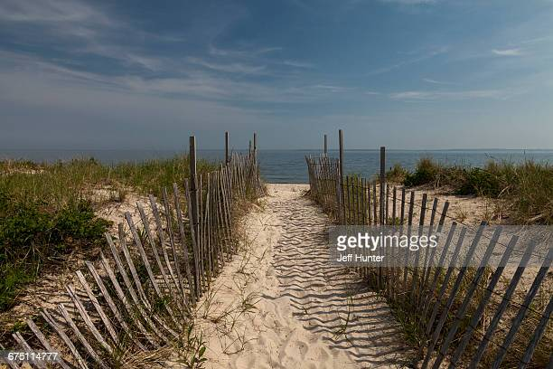 Cape Cod beach with path and sand fences