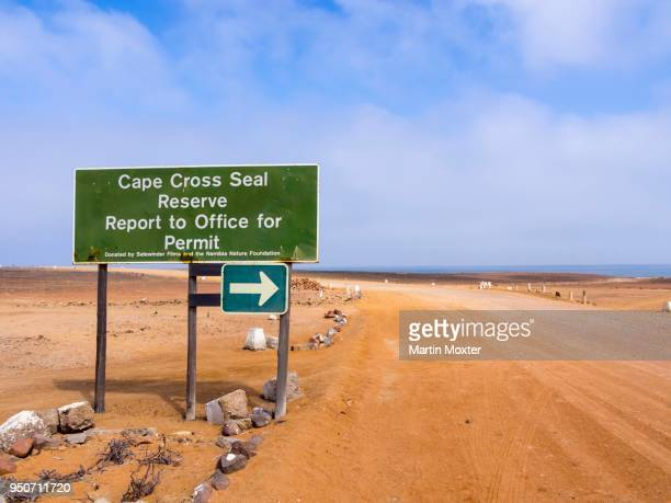 cape cross, protection zone, reserve for seals, erongo region, namibia - erongo stock photos and pictures